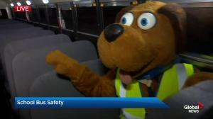 School bus safety in Calgary