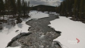 Tsuut'ina Nation 'vigorously opposes' Bragg Creek berm project