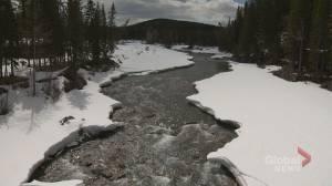 Tsuut'ina Nation 'vigorously opposes' Bragg Creek berm project