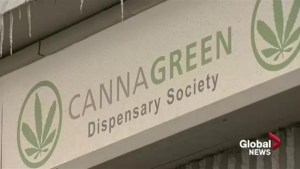 Police raids won't stop Regina dispensary