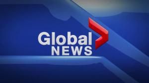 Global News Hour at 6 Edmonton: Nov. 14