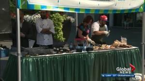 Federal Building plaza hosting Taste of Edmonton