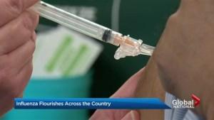 Study warns of deadly flu season