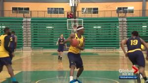 Edmonton Stingers ready to make noise in the Canadian Elite Basketball League