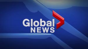 Global News at 5 Edmonton: Feb. 5