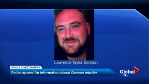 Toronto police appeal for information on city's 20th homicide of 2019