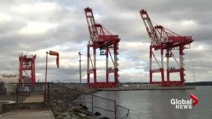 Port of Halifax explores expansion options