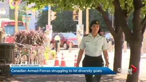 Canadian Forces struggle to diversify