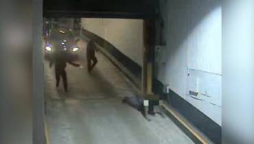 Police release graphic video of fatal shooting in downtown Toronto