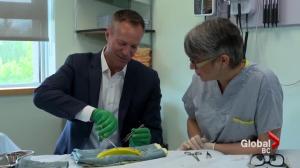Chris Gailus tries his hand at suturing