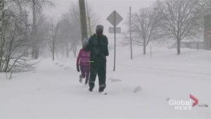Maritimers kick off the new year with winter storm
