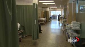 Organization speaks out against cuts at Nova Scotia Department of Health and Wellness