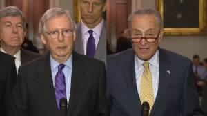 Republican and Democrat Senate leaders call for fix to immigration crisis