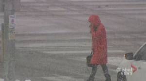 GTA commuters trudge through beginning stages of heavy snow storm