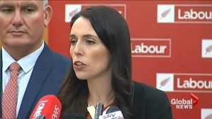 New Zealand's new Prime Minister-elect looks forward to tackling issues of coalition government