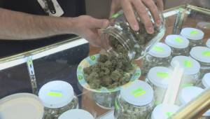The federal Liberal government lays out it plan to legalize marijuana