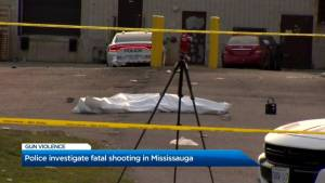 Peel Regional Police investigating that region's 10th homicide of 2019