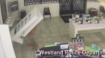 Video shows cell phone display falling on alleged thief at store in Michigan