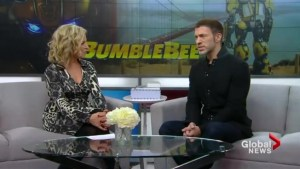 Bumblebee director Travis Knight