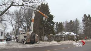 Gale force winds knocked out power to thousands, damaged property and more than 50 centimeters of snow