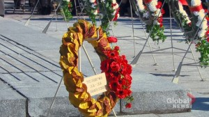 Longtime Legion tour guide from B.C. lays special wreath at national Remembrance Day ceremony