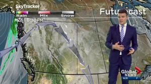 Edmonton Weather Forecast: Nov. 12