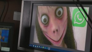 West Island school issues warning about Momo challenge