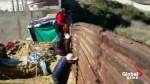 Salvadoran family jumps Tijuana border fence, make run for USA