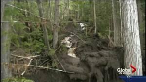 Logging project helped trigger Cherryville landslide