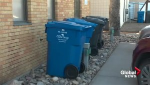Lethbridge residents split on curbside recycling