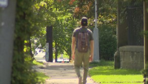 Greener neighbourhoods could lead to longer lives: Canadian study