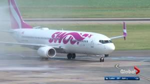 Low cost flying lands in Edmonton