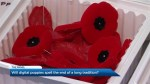 Would you wear a 'digital poppy' for Remembrance Day?