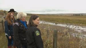 Alberta ranch donates land to province for conservation efforts (01:37)