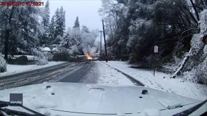 California driver avoids being hit by power lines after heavy snow brings down tree