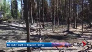 B.C. tourism impacted by Elephant Hill fire