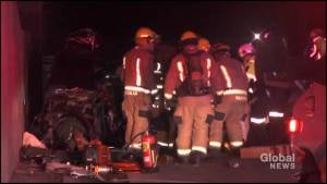 Man dies in collision on Hwy 115 near Peterborough
