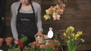 GardenWorks: Easter tablescaping ideas
