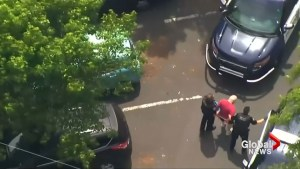 Driver arrested in Portland, Oregon hit and run