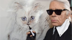 Choupette, Karl Lagerfeld's cat, stands to inherit millions of dollars