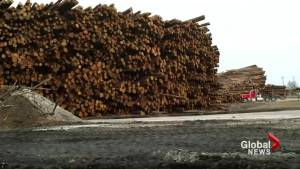 Temporary softwood lumber agreement between Canada and U.S. expires