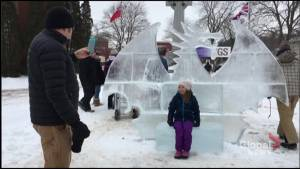 Lakefield cenotaph sparkles during Ice Sculpture Competition