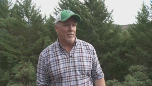 B.C. Premier John Horgan's unusual stress-reducing hobby