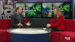 Ask the Expert: Understanding cannabis health concerns