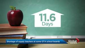Shortage of supply teachers at some GTA school boards