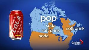 Do you call sugary, carbonated drinks sodas, soft drinks or cans of pop?