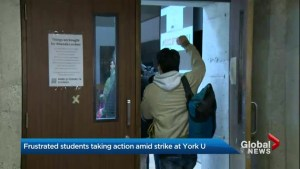 Students stage sit-in to revive talks between York University and CUPE Local 3903