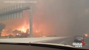 Commuter records wildfire near Athens as they flee from the oncoming flames