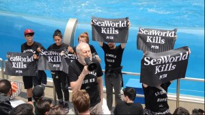 James Cromwell protests SeaWorld's orca show with PETA
