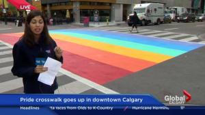 Rainbow crosswalk on display for 2016 Calgary Pride Festival